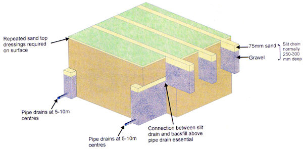 Lawn Care and Construction - Croquet Lawns: their Construction